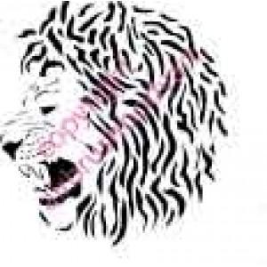 0212 lion head re-usable stencil